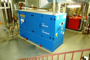 CHP unit for waterpark