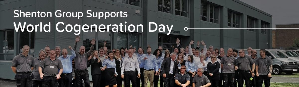 World Cogeneration Day 2020
